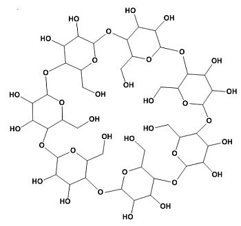 what are the monomers of fats
